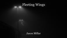 Fleeting Wings