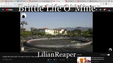 Brittle Life O' Mine