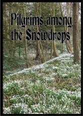 Pilgrims among the Snowdrops
