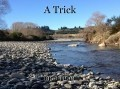A Trick