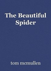 The Beautiful Spider