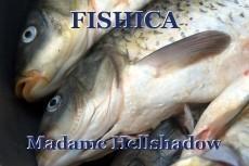 FISHICA