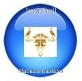 Invisibull