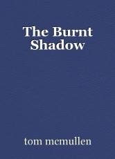 The Burnt Shadow