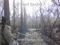 Tweed Becker