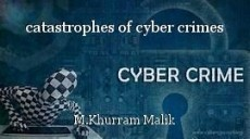 catastrophes of cyber crimes