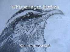 Whispering to Matilda