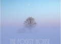 The Foggy House
