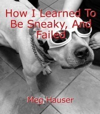 How I Learned To Be Sneaky, And Failed