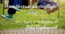 intellectual development stage