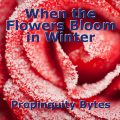 When the Flowers Bloom in Winter