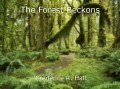 The Forest Beckons