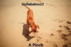 A Pinch