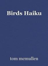 Birds Haiku