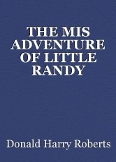 THE MIS ADVENTURE OF LITTLE RANDY DINGLEDORPH