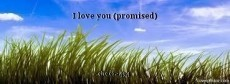 I love you (promised)