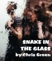 Snake in the Glass