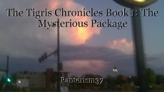 The Tigris Chronicles Book 1: The Mysterious Package