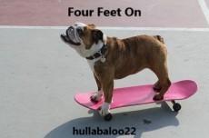 Four Feet On