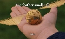 The feather small ball