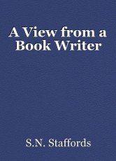 A View from a Book Writer