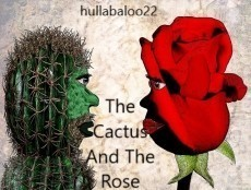 The Cactus And The Rose