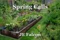 Spring Calls