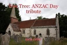 Yew Tree: ANZAC Day tribute