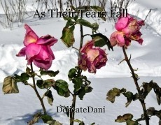 As Their Tears Fall
