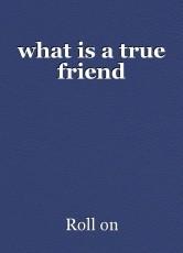 what is a true friend