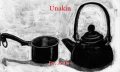 Unakin
