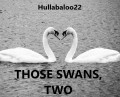 Those Swans, Two