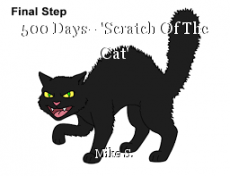 500 Days--'Scratch Of The Cat'