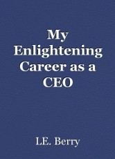 My Enlightening Career as a CEO
