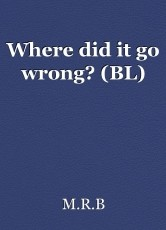 Where did it go wrong? (BL)