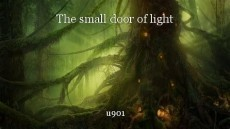 The small door of light