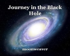 Journey in the Black Hole