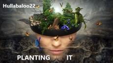 Planting It