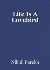 Life Is A Lovebird