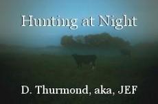 Hunting at Night