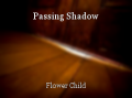 Passing Shadow