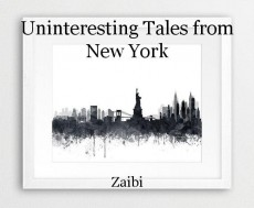 Uninteresting Tales from New York