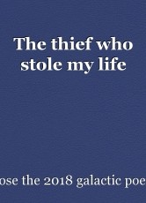 The thief who stole my life