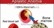 Aplastic Anemia Market Research Report-Ken Research