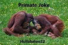 Primate Joke