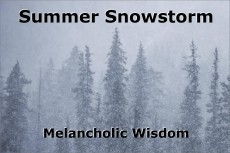 Summer Snowstorm