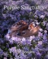 Purple Sanctuary