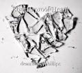 Shatterproof Heart
