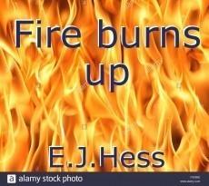 Fire burns up