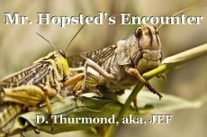 Mr. Hopsted's Encounter
